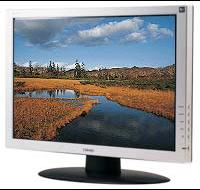 "22"" Widescreen LCD Monitor"